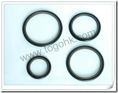 Rubber Gasket Product